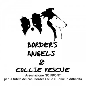 Border's angels & collie rescue