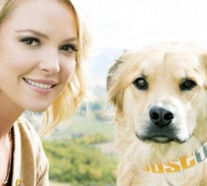 KATHERINE HEIGL, STAR DI GREY'S ANATOMY, CON JUST ONE PER GLI ANIMALI