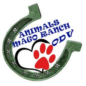 Animals mago ranch odv