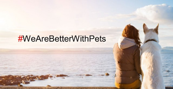 'We are better with pets': fai un gesto pet-friendly e regali un pasto