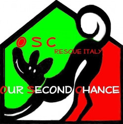 OSC our second chance
