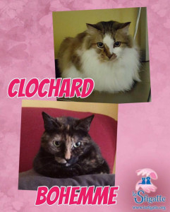 Clochard e Bohemme